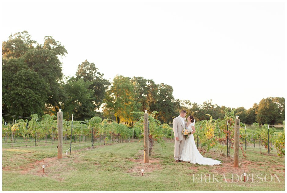 wedding portraits in a southern vineyard